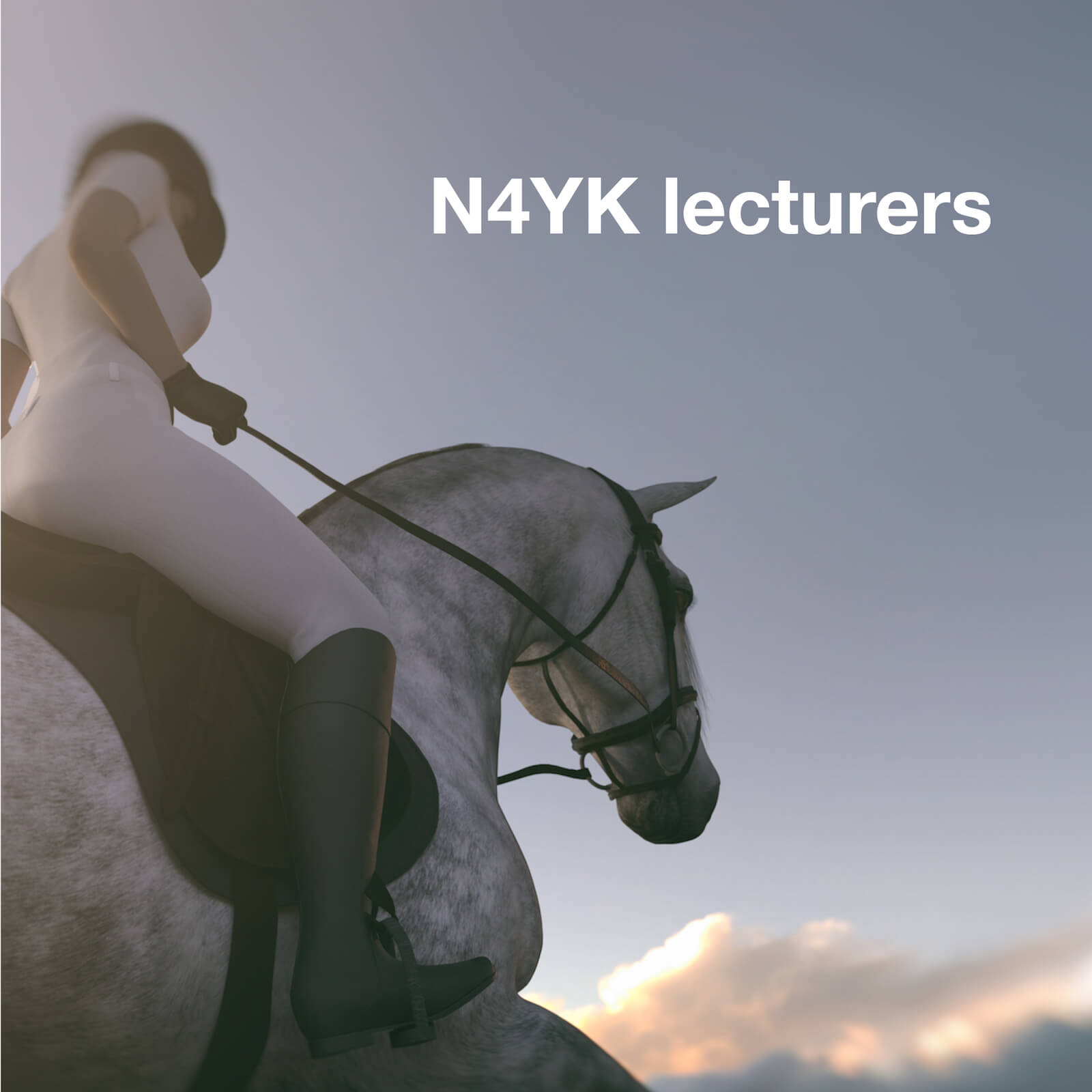 professional and qualified lecturers at N4YK